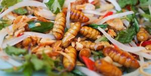 Recette de vers de bambou biologiques en salade