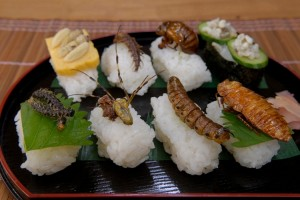 Sushis d'insectes comestibles