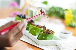 Préparations à base d'insectes comestibles