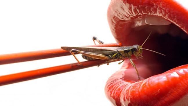 Manger des insectes comestibles biologiques est excellent pour la santé